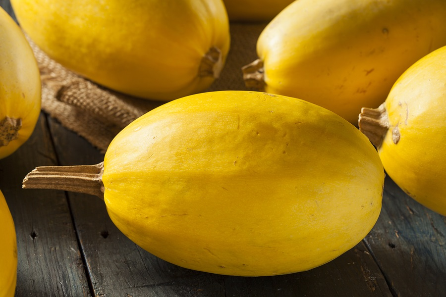 Raw Organic Yellow Spaghetti Squash on a Background